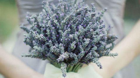 Milyen virág illik hozzád?