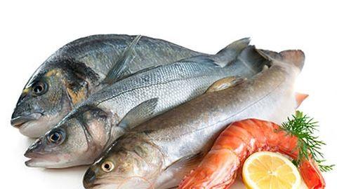 50 éven belül elfogyhatnak a halak