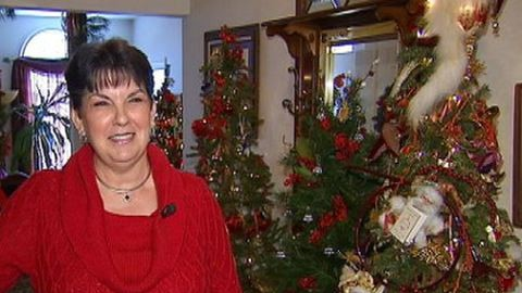 Elképesztő: 277 darab karácsonyfája van egy nőnek
