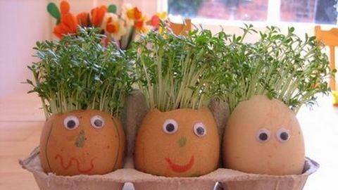 Kertészkedj a gyerekekkel a konyhában!