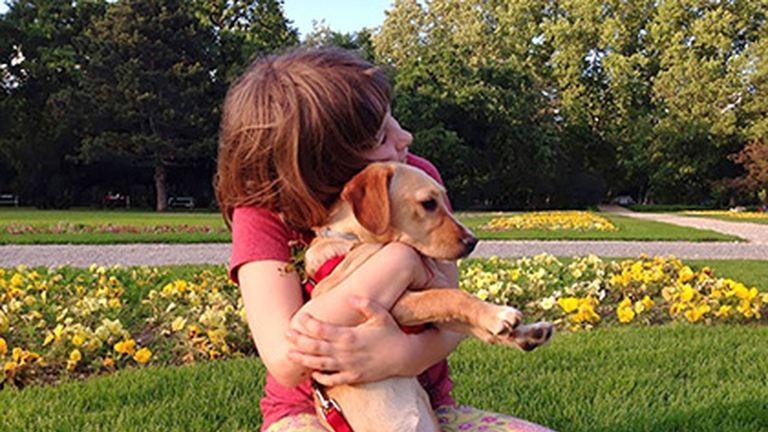 Mi az igazság a menhelyi kutyákról? – Örökbefogadás gyerekekkel