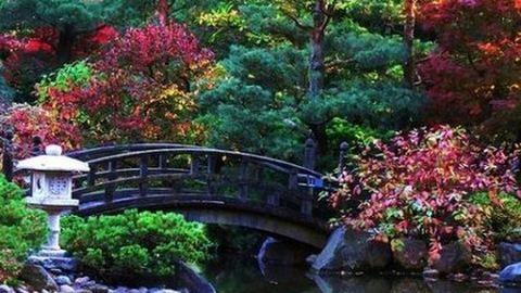Különleges japánkertek a világból