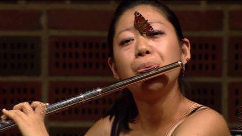 Pillangó támadt a fuvolistára koncert közben – videó