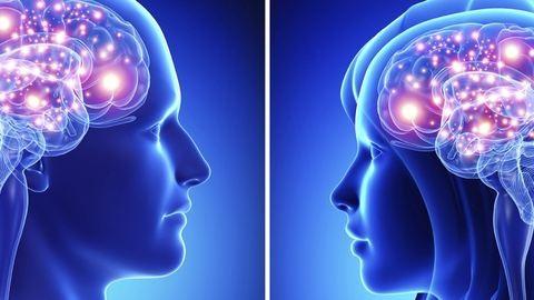 Tudományos magyarázkodás a nemek közti különbségekre