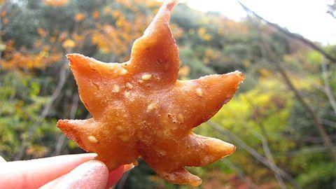 Az őszi avarból csemegéznek a japánok