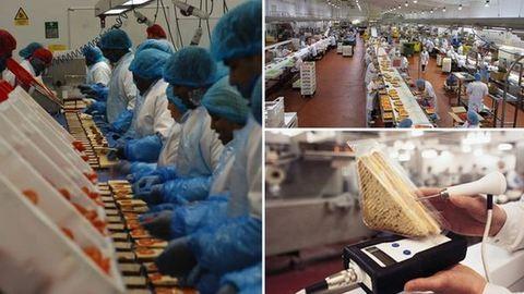 Magyarok Angliában: megszólaltak a szendvicsgyár dolgozói