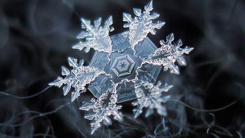10 elképesztő fotó hópelyhekről