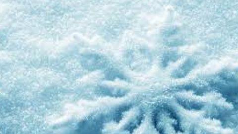 Íme, a kutyus első találkozása a hóval – vicces animgif