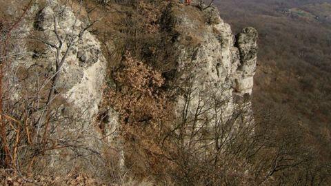 Gerincsérülést szenvedett egy turista Szentendre közelében