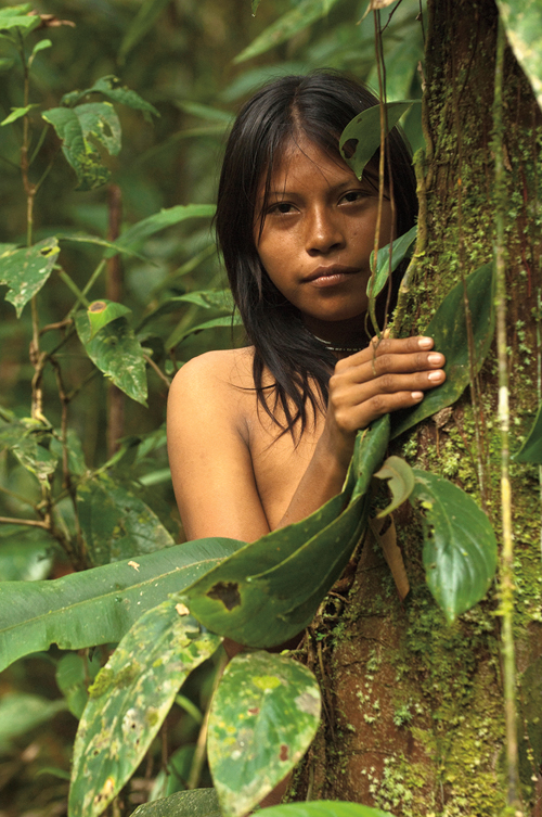 Törzsi kultúrák kincsei