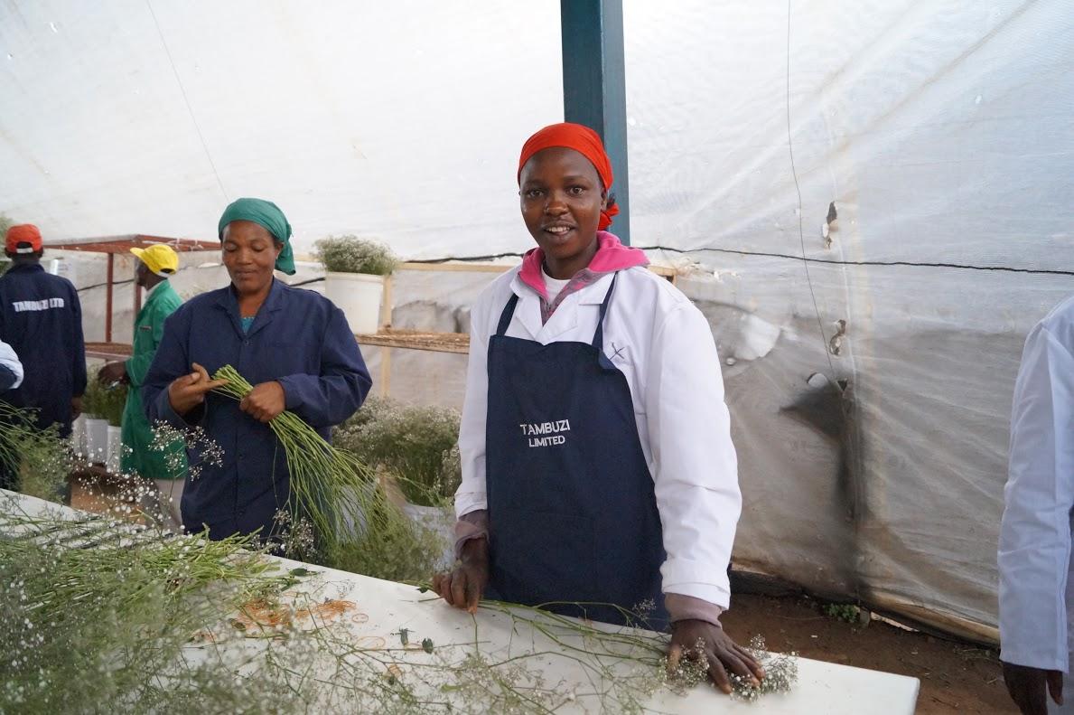 A farm dolgozói méltányos munkabért kapnak, és választott szervezetüket partnernek tekinti a tulajdonos