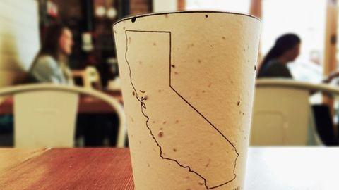Itt az elültethető kávéspohár! – fotó