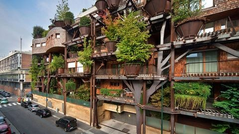 150 élő fa lakik a társasházban – fotók