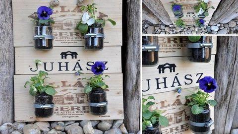 Tavaszi tipp: ültess a vázába is!