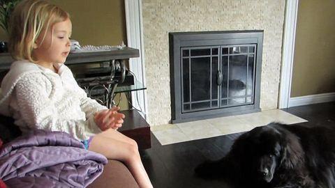 Tündéri videó: megnyugtatta féltékeny kutyáját a kislány