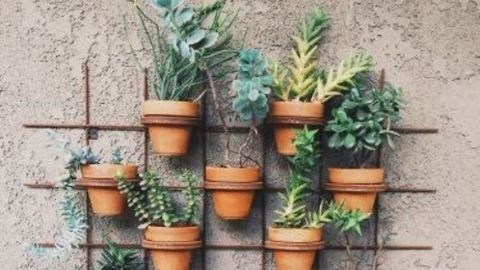 Készíts saját fűszerkertet a teraszra