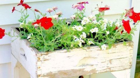 5 virágláda a kertbe, amit otthon is megcsinálhatsz
