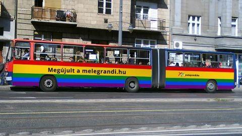 Nem engedte a BKV egy  meleg társkereső hirdetését a buszaira