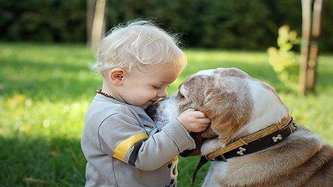 Minden gyereknek szüksége lenne egy kutyára – tüneményes fotók
