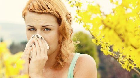 Jön a pollenszezon - szükséged lesz a zsepire