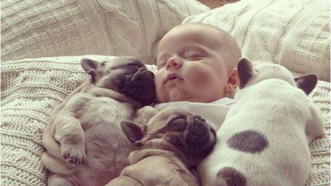 7 alvó kisbaba, akiket muszáj látnod