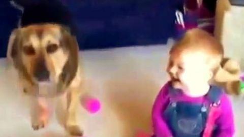 Ettől a kisgyerektől biztosan mosolyra fakadsz! – tündéri videó