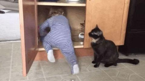 Vicces videó: bezárta a macska a gyereket a szekrénybe