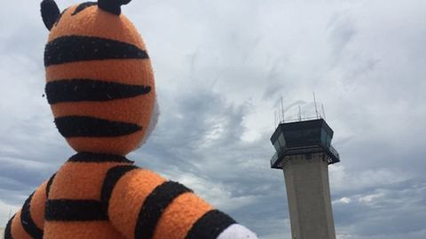 Cuki fotók: bejárta a repteret az elveszett plüssállat, majd hazatért