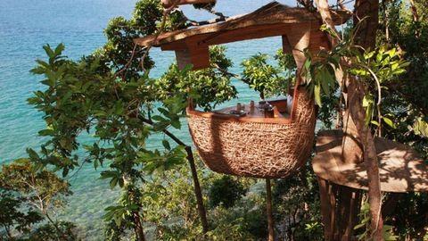 8 bámulatosan szép, fára épített étterem