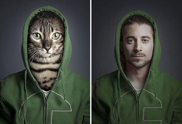 Gazdáik bőrébe bújttatta a macskákat egy fotós