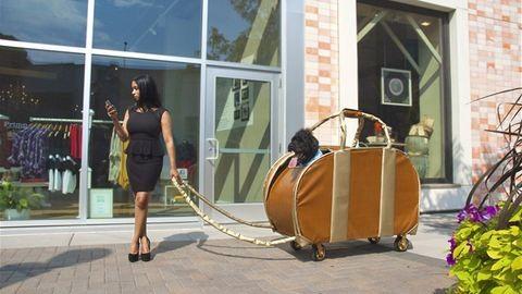 Kitalálod, hogy olcsó táska vagy luxustáska?