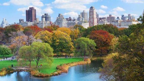 Ez a világ 10 legzsúfoltabb városa