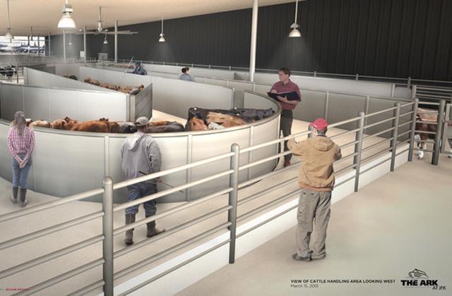 Saját terminált kapnak az állatok a New York-i reptéren