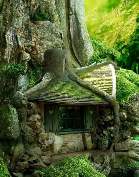 és egy másik, ugyancsak fába