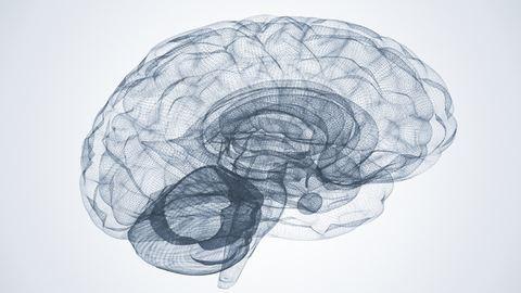 Az intelligens emberek tovább élnek
