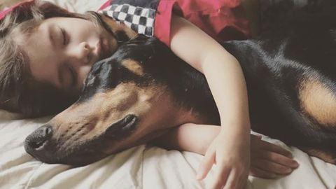 Mindent együtt csinál a kislány és a kutyája – tündéri fotók