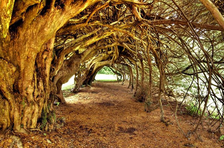 10 gyönyörű hely Wales-ben, amit egyszer látnod kell