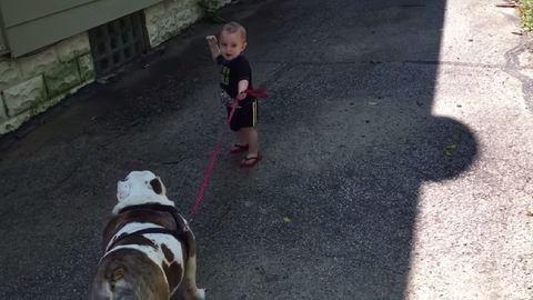 Ez a kisfiú elég nehezen boldogul a kutyasétáltatással! – cuki videó