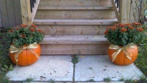 5 őszi dekoráció egyszerűen – fotók