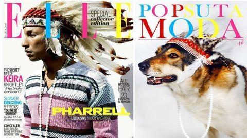 Szuper kezdeményezés: híres címlapokat fotóztak újra kóbor kutyákkal