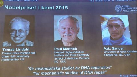 Három férfi kapta idén a kémiai Nobel-díjat