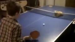 Imádni való videó: így pingpongozik a kiscica