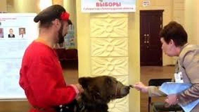 Medvével ment szavazni egy orosz választópolgár