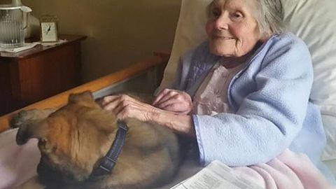 Kiskutyával vidították fel az idősek otthonának lakóit – megható fotók