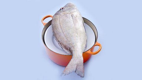 Nem lesz drágább a karácsonyi hal