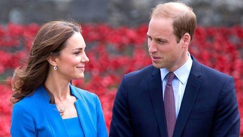 Vilmos herceg nagyon aggódik a családja biztonságáért