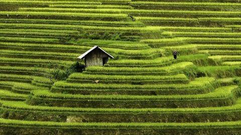 Káprázatosan szép fotókon a sokoldalú Vietnam