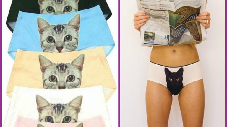 Lábak közül kikandikáló cica az új bugyi-őrület