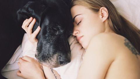 Az állatoddal alszol? Elmondjuk, jó ötlet-e!