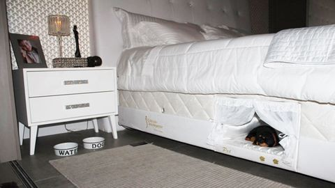 Megérkezett az ideális matrac kedvencednek és neked – beépített kutyaággyal